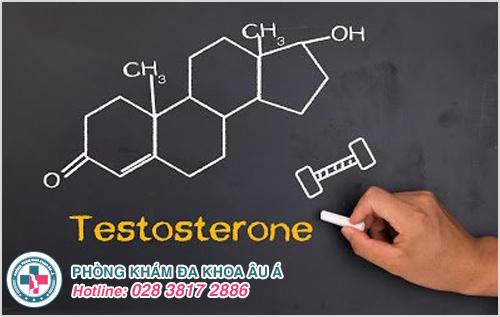 Cách tăng cường testosterone ở nam giới bằng thực phẩm tự nhiên