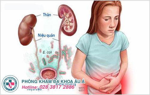 Dấu hiệu nhiễm khuẩn đường tiết niệu và cách điều trị hiệu quả