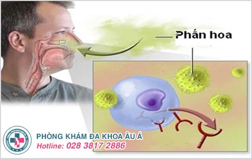 Mụn nước ở mũi: Hình ảnh nguyên nhân biểu hiện cách chữa